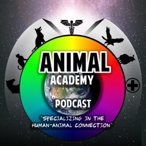 The Animal Academy Podcast with Allison White - Our Podcast Art