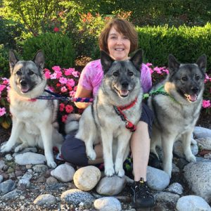 Connie Schulte - A Guest and Animal Conditioning & Rehabilitation Specialist via The Animal Academy Podcast