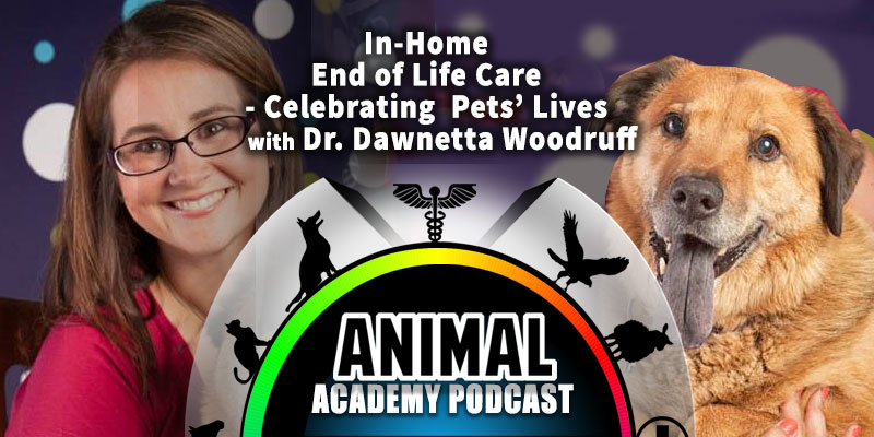 Animal Academy Podcast: In-Home End of Life Care - Celebrating Pets' Lives with Dr. Dawnetta Woodruff