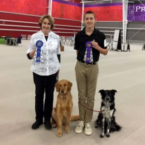 Ginger Kinion: A Guest on The Animal Academy Podcast