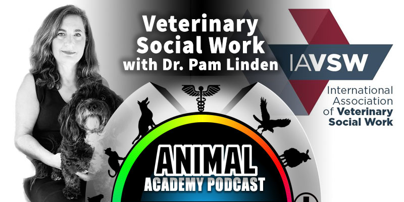 Veterinary Social Work with Dr. Pam Linden